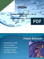 Enzim Kelompok15&16 PBR2013