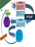 Diagrama de Ciclo Endocrino Ovular