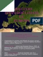 asociatii_arbustive_mediteraneene.ppt