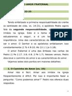 Estudo #10 - 1 Pedro 1.22-25.doc