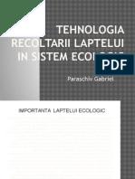 Tehnologia Obtinerii Laptelui in Sistem Ecologic