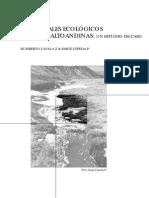 Caudales ecologicos en vegas altoandinas H Zavala Z & J Cepeda P.capitulo 3.9.pdf