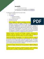 oferta_y_demanda.docx
