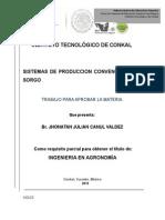 INSTITUTO TECNOLÓGICO DE CONKAL SORGO GRANIFERO.docx