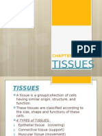 Anatomy 3 - Tissues
