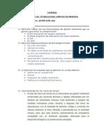 Evaluacion Tecnologias Limpias en Mineria - Copia