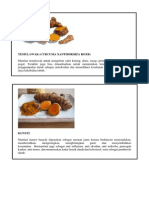 TANAMAN OBAT KELUARGA.pdf