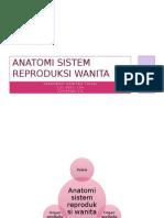 Anatomi Sistem Reproduksi Wanita