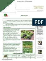 HORTALIÇAS - Casa e Cia ... Portal do Conhecimento.pdf