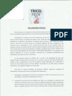 Declaración TRICEL FEUV-Casa Central 2015