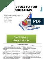 Categorías Programáticas & Proceso Presupuestal.