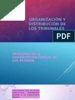 ORGANIZACIÓN Y DISTRIBUCIÓN DE LOS TRIBUNALES.pptx
