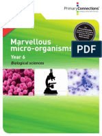 marvellous organisms comp