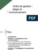 Strtégie envrt et cont de gestion.pdf