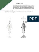 hara-line-exercise2.pdf