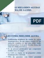 Leucemias Mieloides Agudas (LMA) OMS.pptx