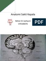 Anatomi Sakit Kepala