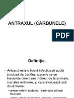 ANTRAXUL, Listeria, Rabia, Bruceloza Trichineloza