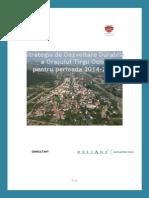 Strategia de dezvoltare durabila a orasului Targu Ocna.pdf