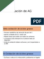 B-Oxidación de AG