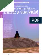 Principios Do Reiki - Sara Cardoso