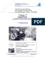Dimensiones de La Madurez