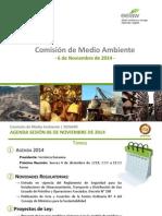 Presentación Comite Medio Ambiente SONAMI 6 noviembre 2014.pdf