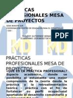 PRÁCTICAS+PROFESIONALES+PRESENTACION