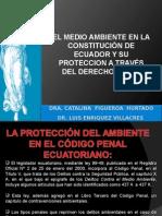 Ecuador.derechos de La Naturaleza
