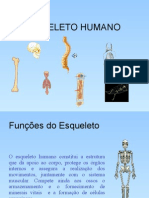 Esqueletohumanopowerpoint Edit 120525102638 Phpapp02