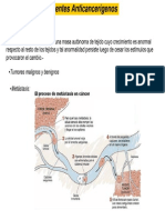 Clases anticancerigenos 2013 TOTAL.pdf