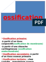 05 Ossification