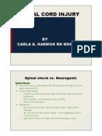 Spinal_neurogenic Shock Class Presentation-2.Pptx