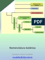 aula 1_nomenclatura2015.pdf