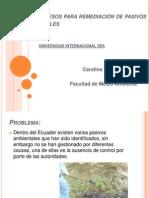 Bioprocesos para remediación de pasivos ambientales