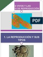 Ud10 11losseresvivosylasfuncionesderelacinyreproduccinii 100301110344 Phpapp01