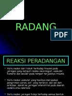 005radang-140525091245-phpapp01