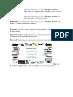 Ejercicio N1.docx
