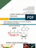 Fabricación ATP