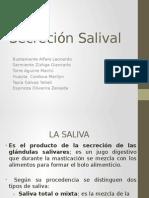 Secrecion Salival