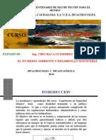 Curso de Legislacion Minera caudalosa 2011.ppt