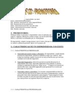 Proyecto de Iniciación a La Actividad Empresarial__2