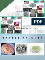 Ob f0ffe8 Clase Expositiva de La Teoria Celular