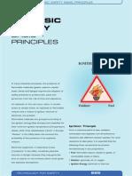 IS_Principles_E.pdf
