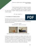 201000938_equilibrio_informe.pdf