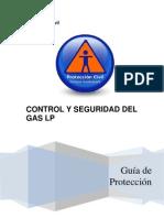 Control y Seguridad Del Gas l