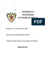 ensayodelnarcotrfico-120423220142-phpapp01