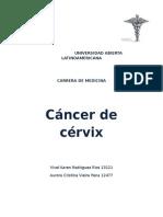 monografia sobre el cancer de Cervix