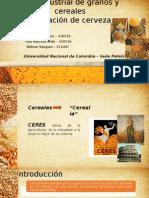 Agroindustria de Granos y Cereales