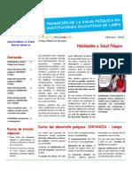 Salud Mental Lampa - Puno - Perú 2015